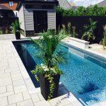 Pavé et piscine creusée avec plantes et cabanon