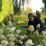 Ouvriers à l'oeuvre dans un aménagement floral