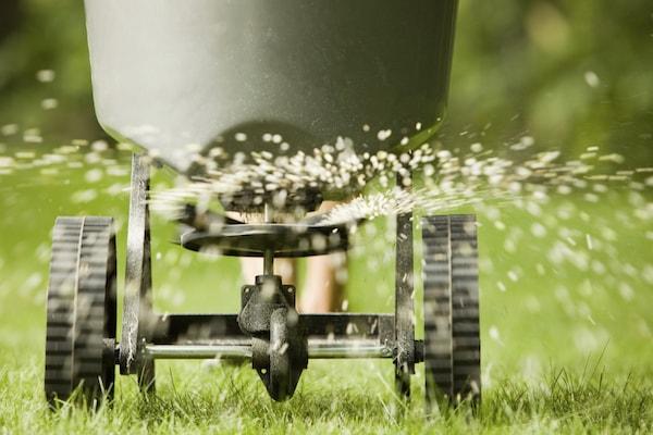 Chariot de traitement de la pelouse