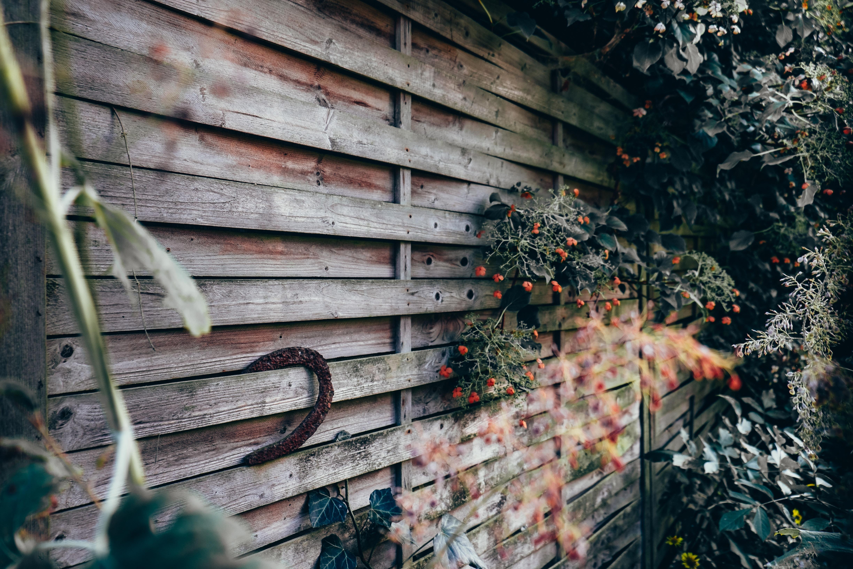 Persienne de bois avec plantes accrochées