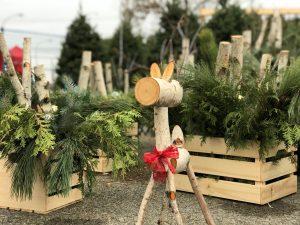 Petit âne fait de rondins de bos dans un décor de Noël.