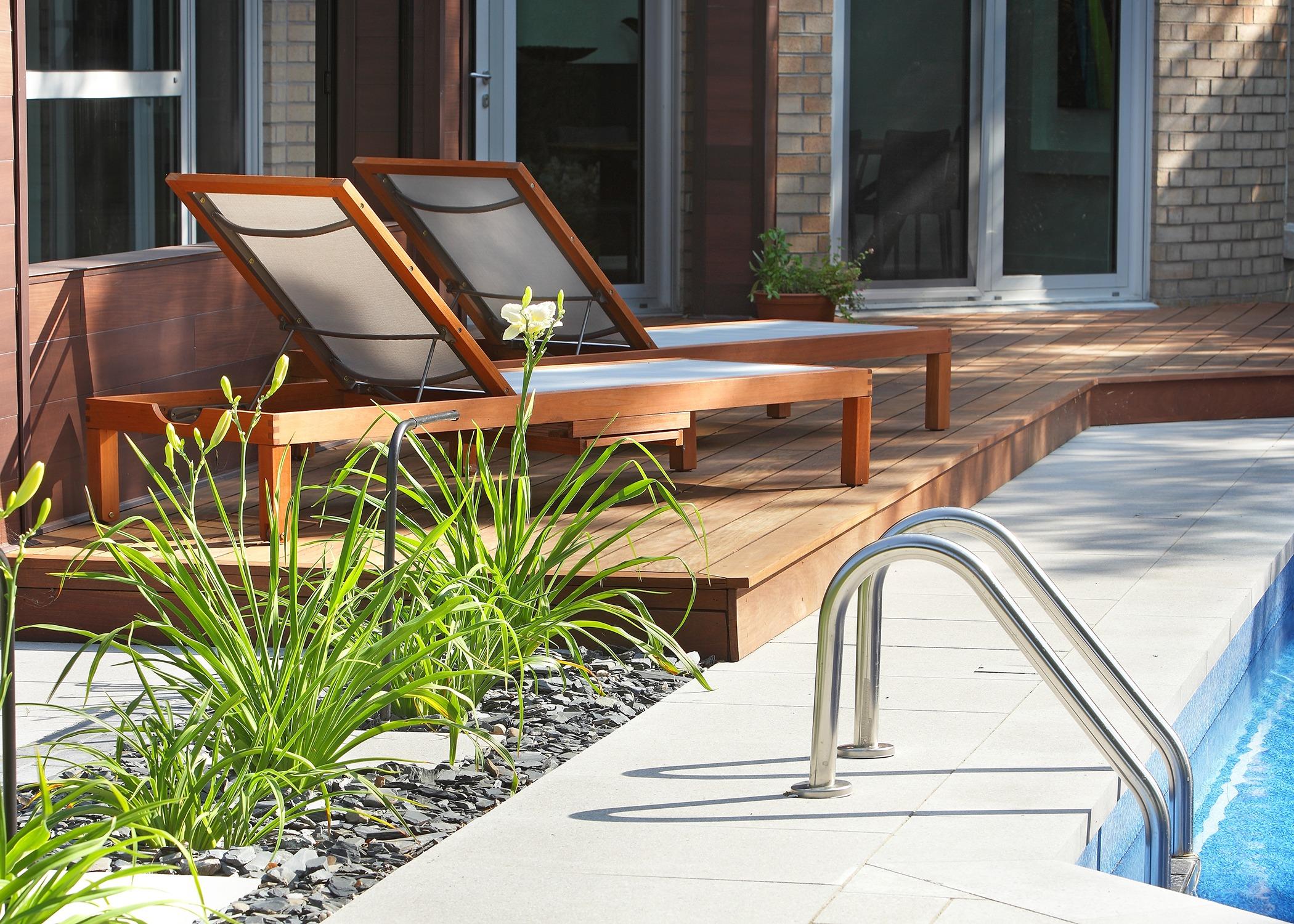 Chaises longues au bord d'une piscine avec aménagement de fleurs