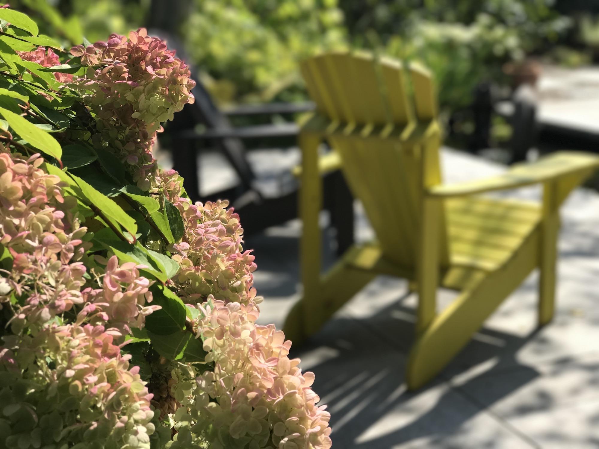 Fleurs avec chaises Adirondack en arrière-plan