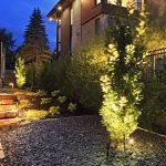 Aménagement paysager d'un espace avec pierre et avec plantes